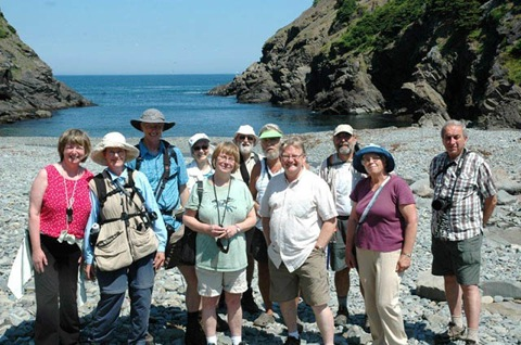 Wildflower Society at Shoe Cove